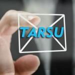 not_tarsu_mc_lg