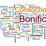 cbonific_lgx